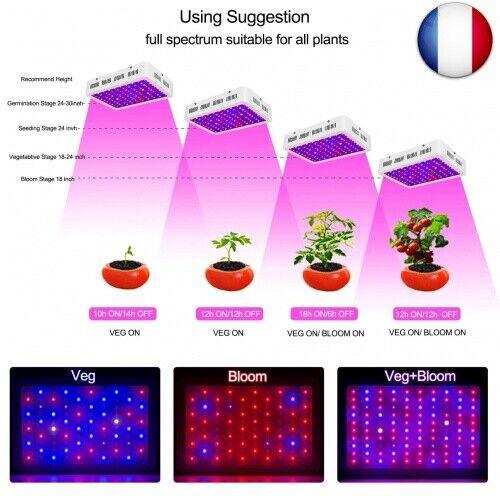 Bloom Roleadro Lampe Led Horticole Floraison avec Veg Led Horticole1000w