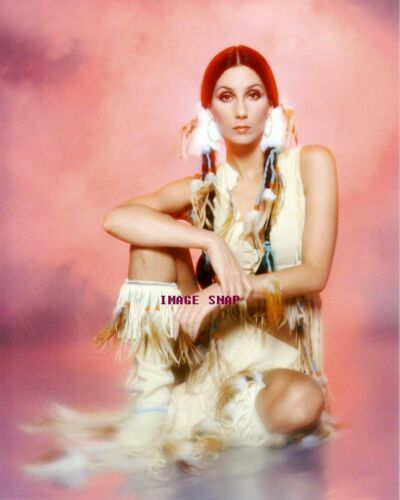 CHER 60s 70s Sixties Seventies Poster Wall Print 24 x 36 17 inch