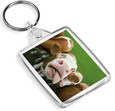 Ginger Highland Cow Keyring Cattle Funny Scotland Animal Cute Gift #8234