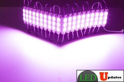 LEDUPDATES 10FT Pink STOREFRONT LED LIGHT Decoration Flower shop UL Power