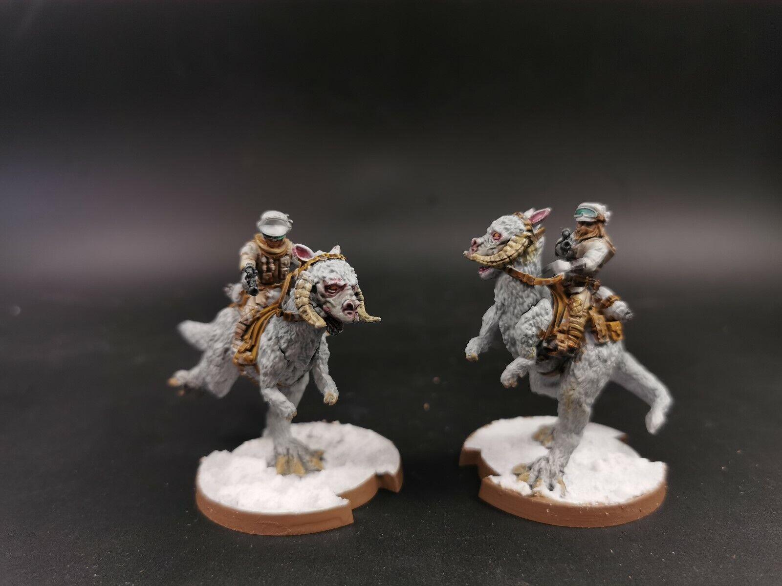 Estrella Wars Legión Rebel Tauntaun Riders exspansion Pro Pintado