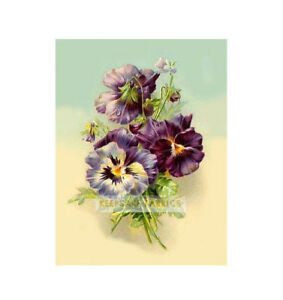 Lavender-Pansy-Bouquet-Flowers-Quilt-Block-Multi-Sizes-FrEE-ShiPPinG-WoRld-WiDE