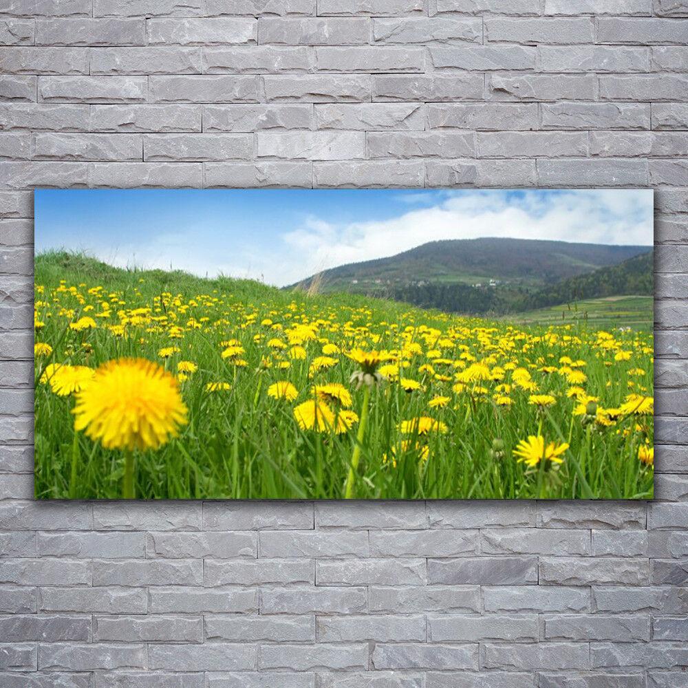 Verre Imprimer Wall Art Image 120x60 Photo Dandelion Champ Nature