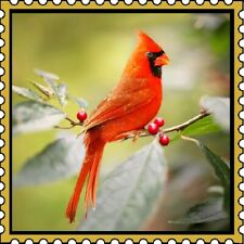 30 Custom Northern Cardinal Stamp Art Personalized Address Labels