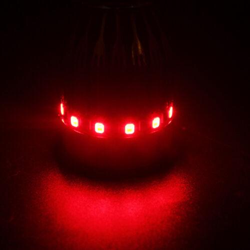 BA20D RGB 9W LED Flash Angel eye Strobe RGB Motorcycle Headlights Fog Lamp DRL