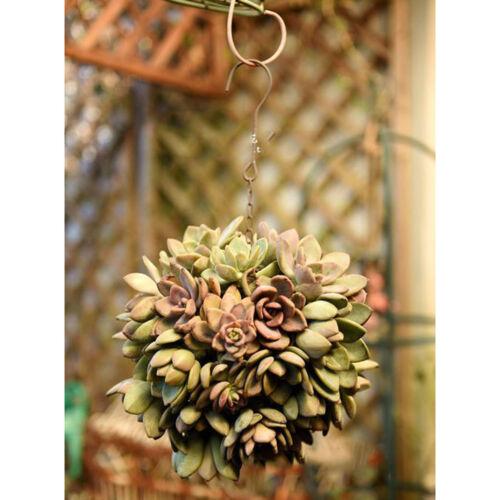 2pcs Rustic Iron Wire Ball Shaped Succulent Pot Iron Hanging Planter Plant