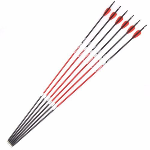 """6pcs 30/"""" Hunting Carbon Arrows Spine 1200 Plastic Feather Archery Hunting"""