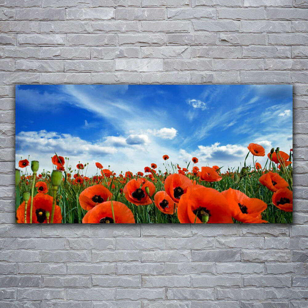 Impression sur verre Wall Art 120x60 Photo Image Meadow Pavot Fleuri