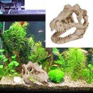 1 Pcs Dragon Resin Aquarium Decoration Dinosaur Skull For Fish Tank