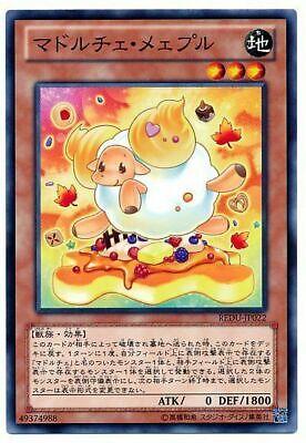 1st Edition Yu-Gi-Oh M//NM REDU-EN025 Common x3 Madolche Butlerusk