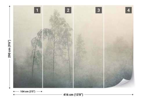 1X-1340046 Woods Trees Frost Mist Photo Wallpaper Wall Mural