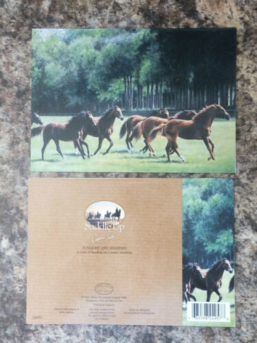 LARGE FINE ART GREETINGS CARD HORSE DESIGNS BLANK INSIDE FOR ANY OCCASION GC 48