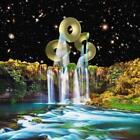 Vibration Animal Sex Brain von Orchestra Of Spheres (2013)