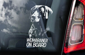 Weimaraner-on-Board-Car-Window-Sticker-Vorstehhund-Dog-Sign-Decal-V01