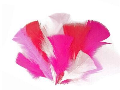PURPLE Turkey T-Base Plumage Feathers 0.50 oz. 1 Pack