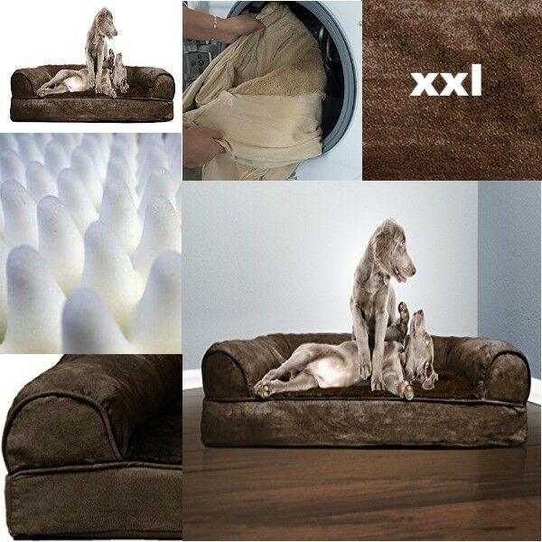 XXL Dog Beds For Large Dogs Clearance Clearance Clearance Orthopedic Foam Washable Waterproof Marronee 027452