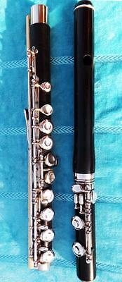 Niedrigerer Preis Mit Haynes Wms Silber Holz Querflöte Holzflöte Handmade Silver Wood Wooden Flute Blasinstrumente