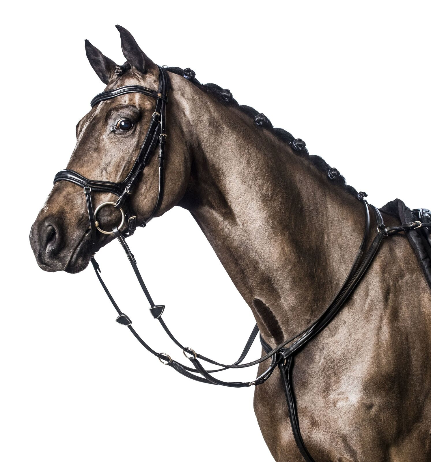 Horseguard Trense, hannoversch. Reithalfter, engl. Leder, nero