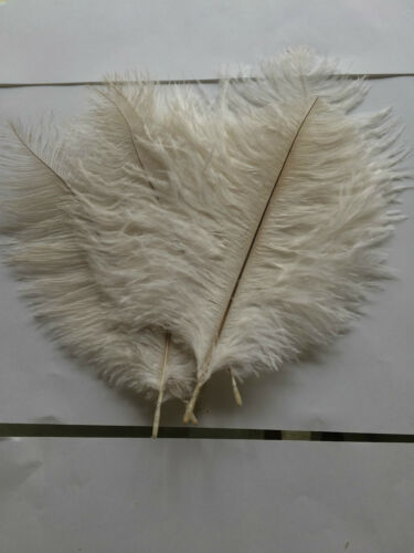 5 PER PK OSTRICH CHICK 20CM//23CM FLUFFY FEATHERS CRAFTS WEDDING GOTHIC 4colors