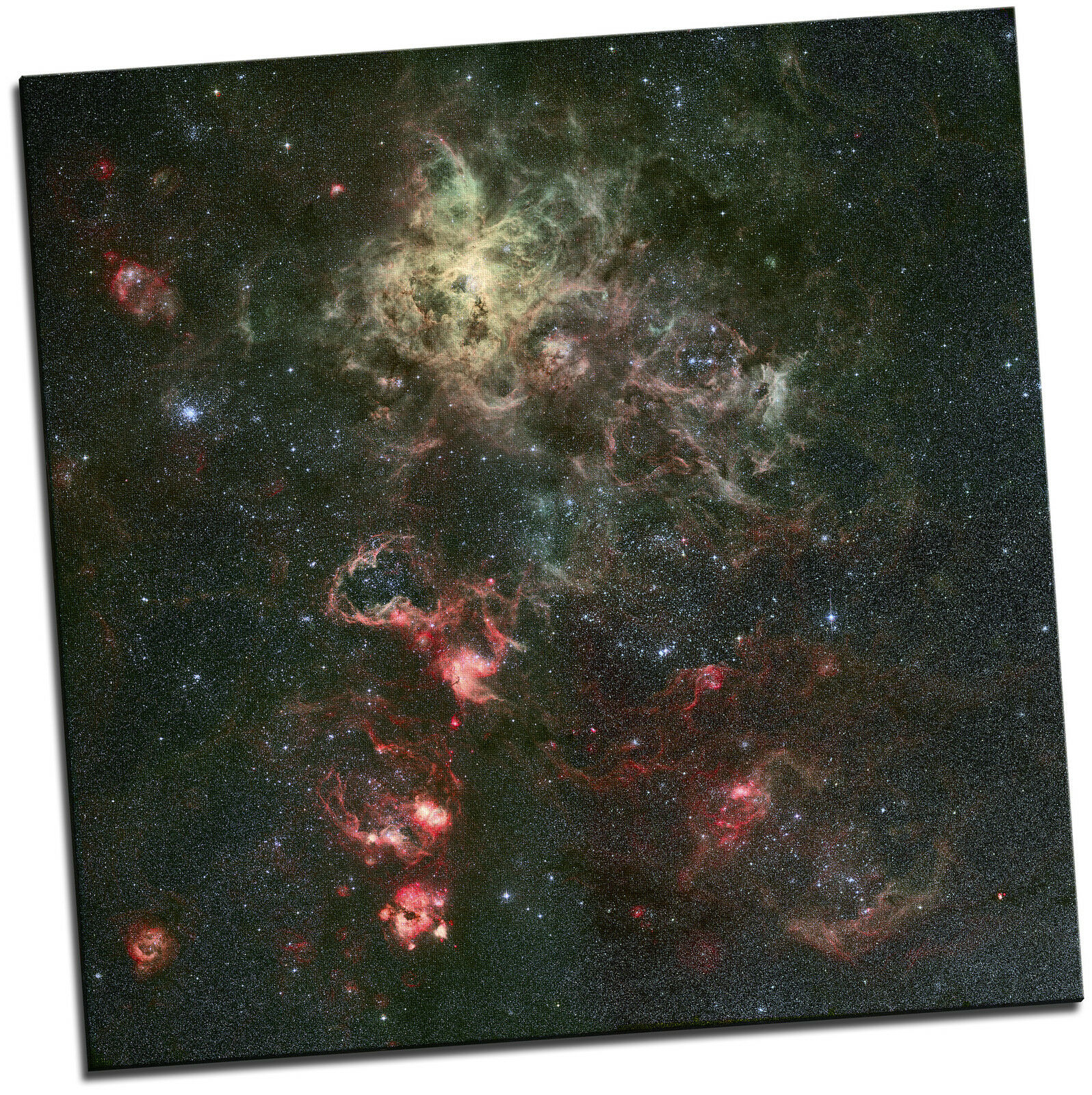 TARANTULA nebulosa REGALO TELA Spazio Immagine Arte