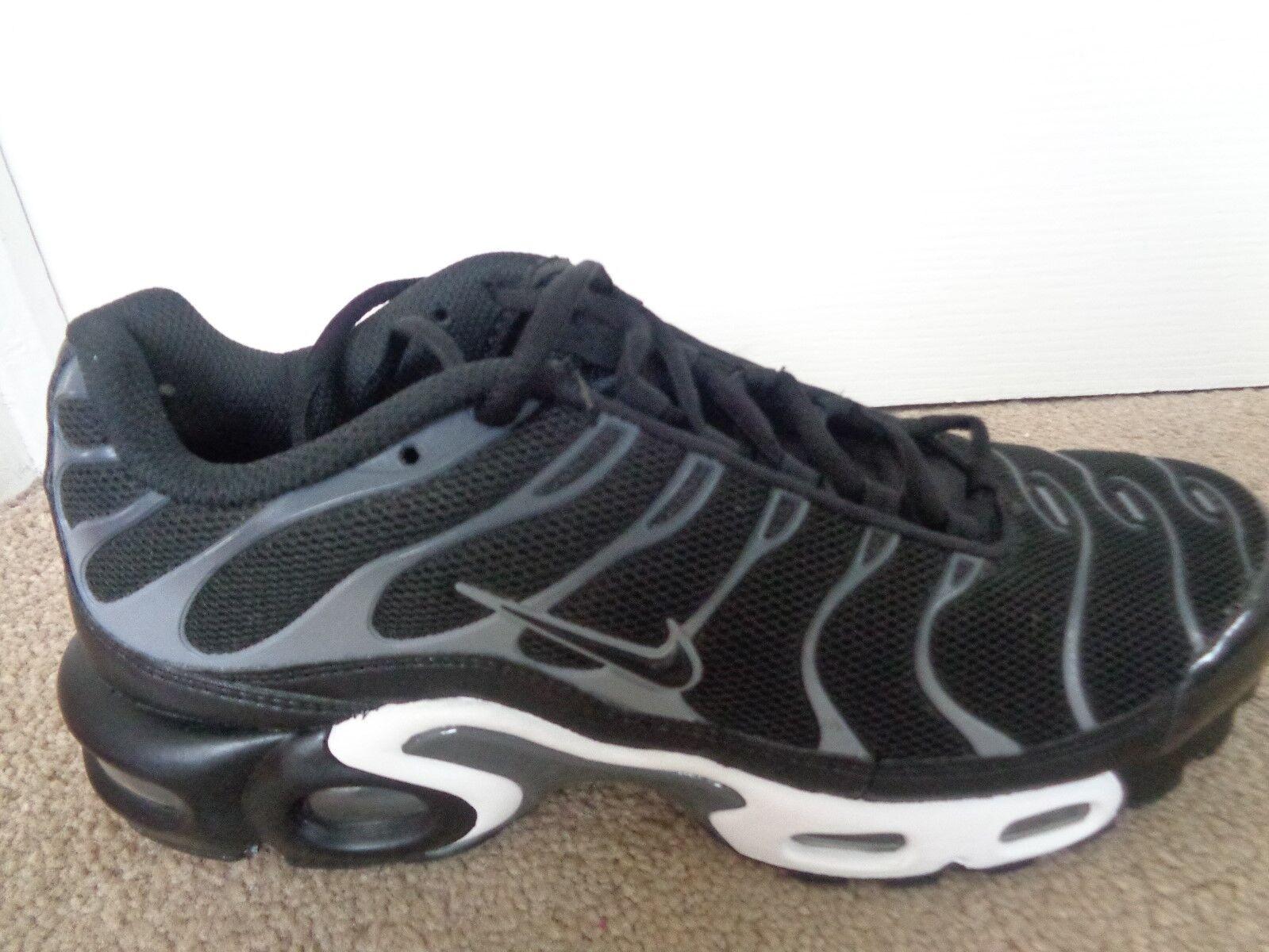 Nike Nike Nike Air Max Plus TXT   Ginnastica 647315 002 EU 40   7 Nuovo + Scatola 905757