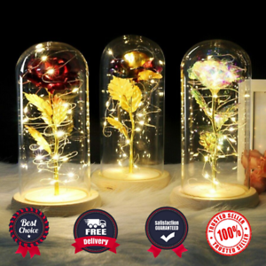 Beauty And The Beast Enchanted Rose in a Glass Dome LED Light Lamp Decor Gift