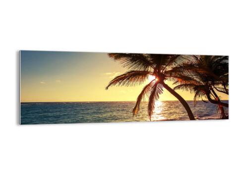 30 patterns-De 3180 Image on Glass-Glass Pictures Photo OCAEN Palms Landscape