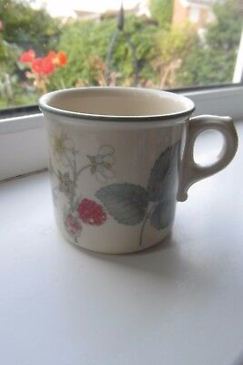 Wedgwood Raspberry Cane Tea Cup