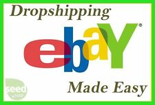 2017 Ebook PDF Dropshiping Ebay Made Easy