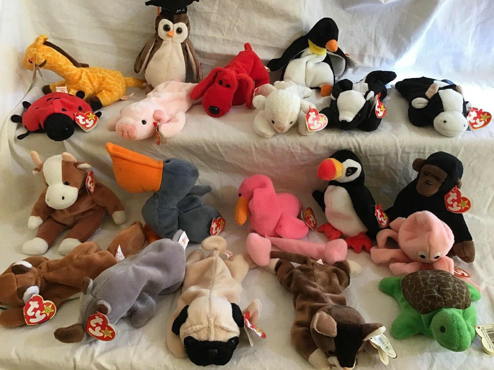 Ty beanie babies 20 rare With Tags