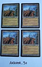 MTG 4x Wasteland Tempest