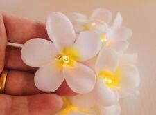 Battery LED White Frangipani Style Flower Fairy Light String Frangipannis