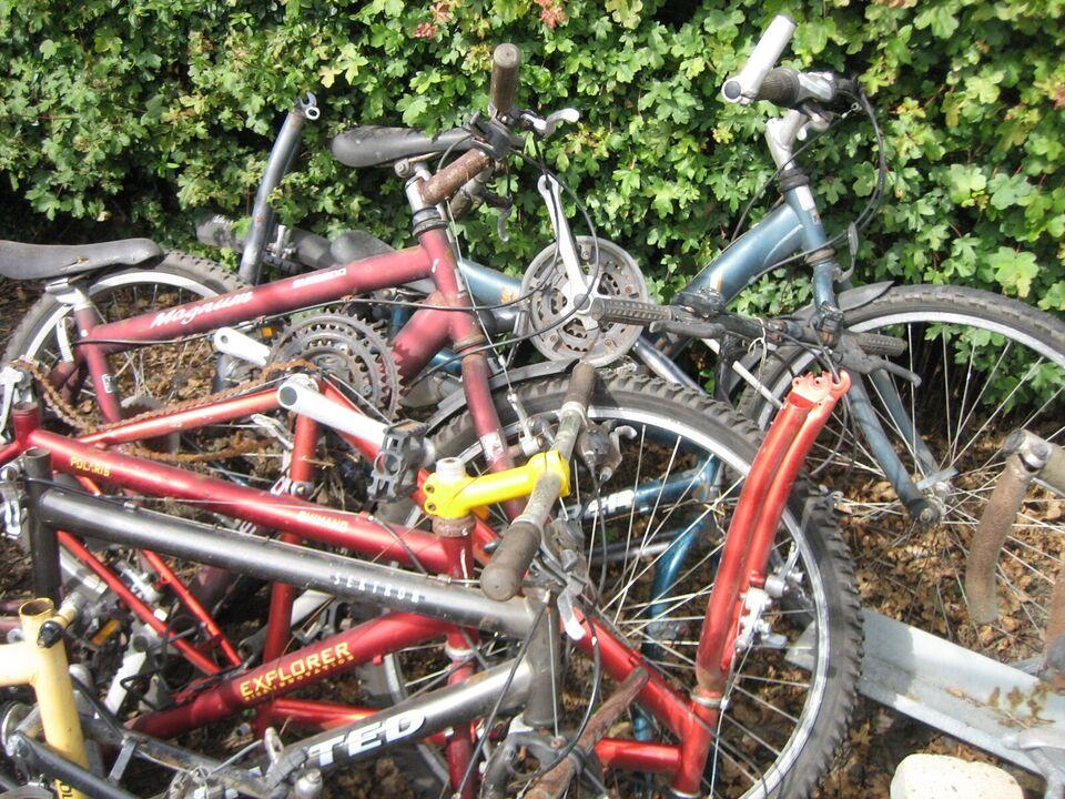 Unisex børnecykel, mountainbike, Flere