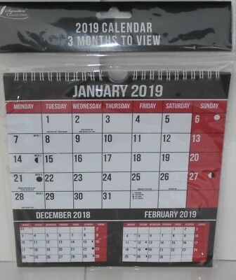 2019 Easy 3 Month to View Calendar Hanging Wall Calendar Planner | eBay