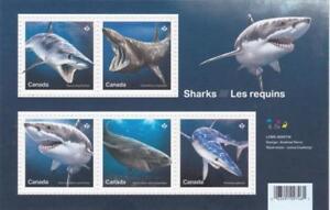 Canada-2018-Souvenir-Sheet-3105-SHARKS-MNH