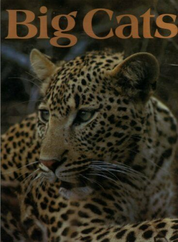 LOVE OF BIG CATS,Bruce Mitchell