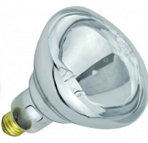 692f1e2457f1 SYLVANIA 250-Watt BR40 Clear Infrared Heat Lamp - 120V - Rated for ...