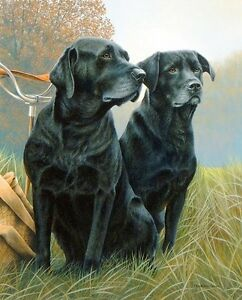 Nigel-Hemming-SENIOR-SERVICE-Old-Older-Black-Labradors-Labs-Retrievers-Dogs-Art