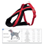 Trixie-Dog-Premium-Touring-Harness-Soft-Thick-Fleece-Lined-Padding-Strong thumbnail 11
