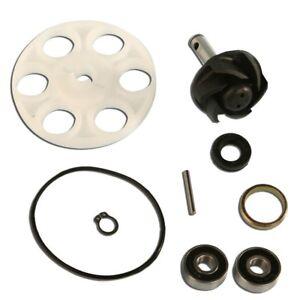 AA-00788-C4-Kit-riparazione-pompa-acqua-Benelli-491-SP-50-99-99
