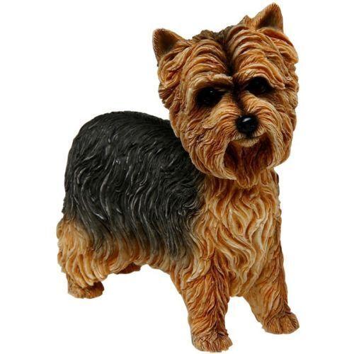 Fine Quality Yorkshire Terrier Dog Ornament//Figurine.Leonardo.Gift Boxed