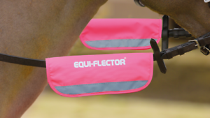 Bright Pink Equi-Flector Bridle//Halter Bands