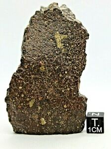 Meteorite-Carbonaceous-CV3-officially-classified-amp-approved-from-outer-space