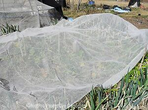 Vege Net 6m x 20m Fruit fly / Insect exclusion - Throw over netting