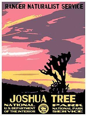 "Art National Park Joshua Tree Rare Hot New 12x16/"" TR61"