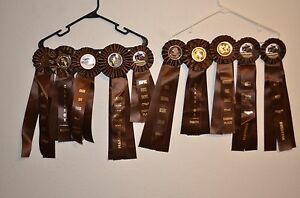 Horse Show Ribbons MIXED LOT BROWN 8th Place 10 ribbons ...