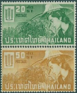 Thailand-1963-SG469-470-Freedom-from-Hunger-set-MNH