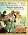 African Americans from Slavery Onwards by Virginia Hamilton (Paperback, 1996)