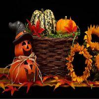 Halloween Witch Pumpkin Sunflower Fall Leaves Coasters U Pick Set Size