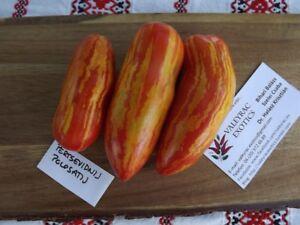 Tomato 5 Pertsevidni polosatiy Gestreifte Paprikaförmige Tomate Samen